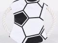 Dog-Sports-Frisbee-soccer