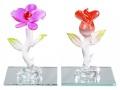 Simply-Beautiful-Flower